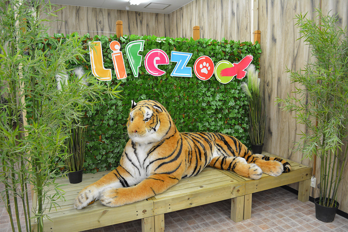 Life Zoo(ライフズー)