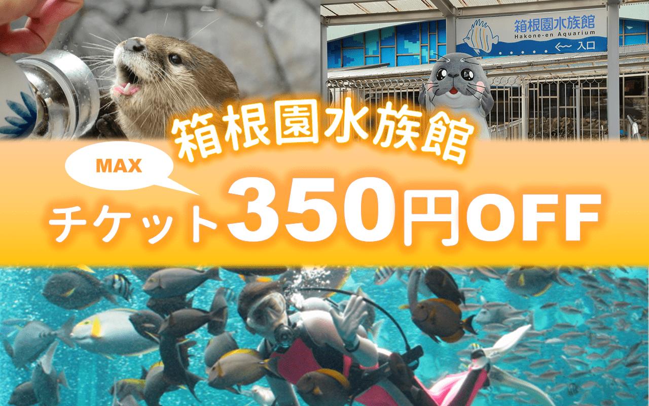 【割引チケット・夏休み特集】箱根園水族館