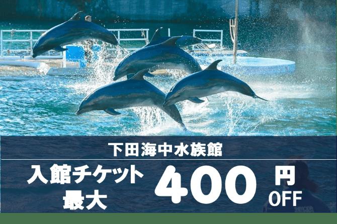 【割引チケット・夏休み特集】下田海中水族館