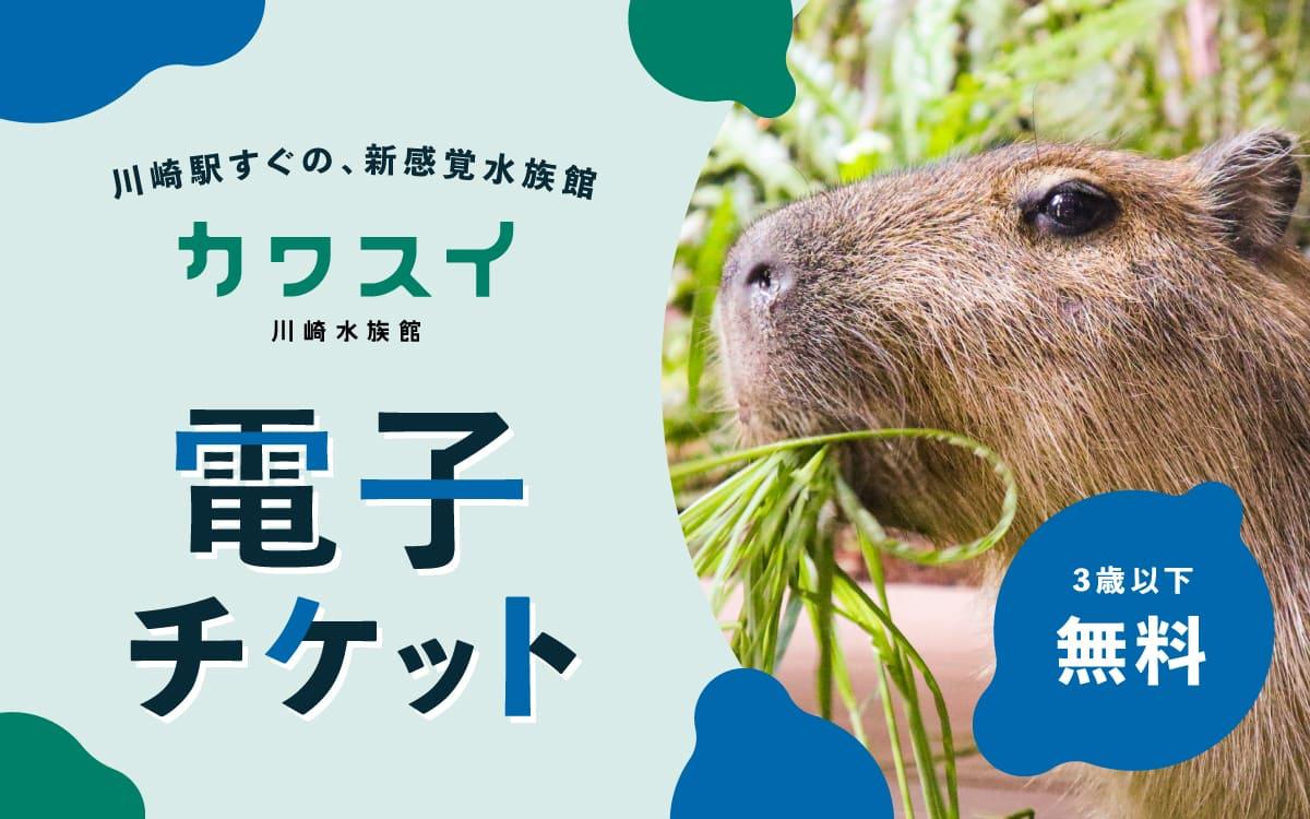 川崎水族館(カワスイ)の電子チケット