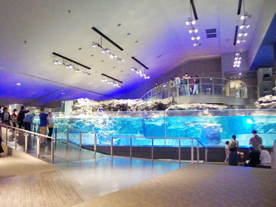 34-aquarium-tokyo-sumida-1