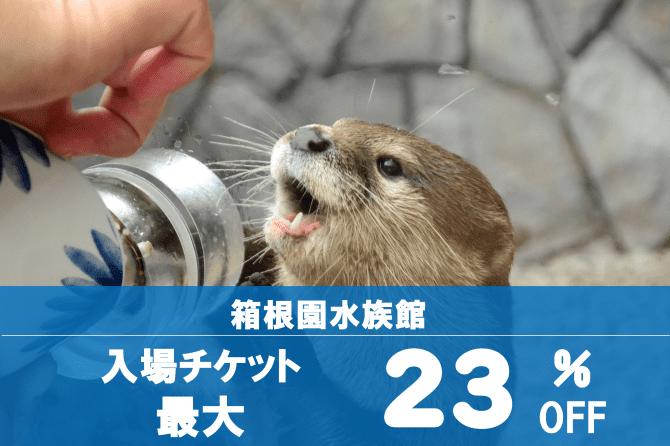 箱根園水族館 入場チケット最大23%OFF