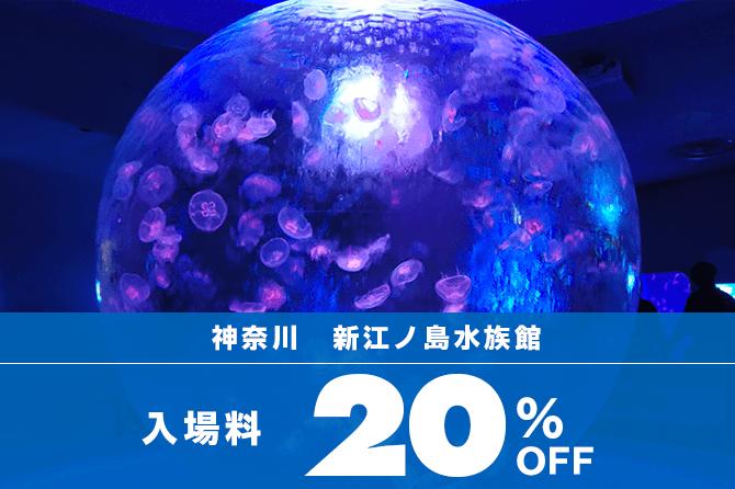 入場料20%OFF!新江ノ島水族館の当日使えるお得なチケット