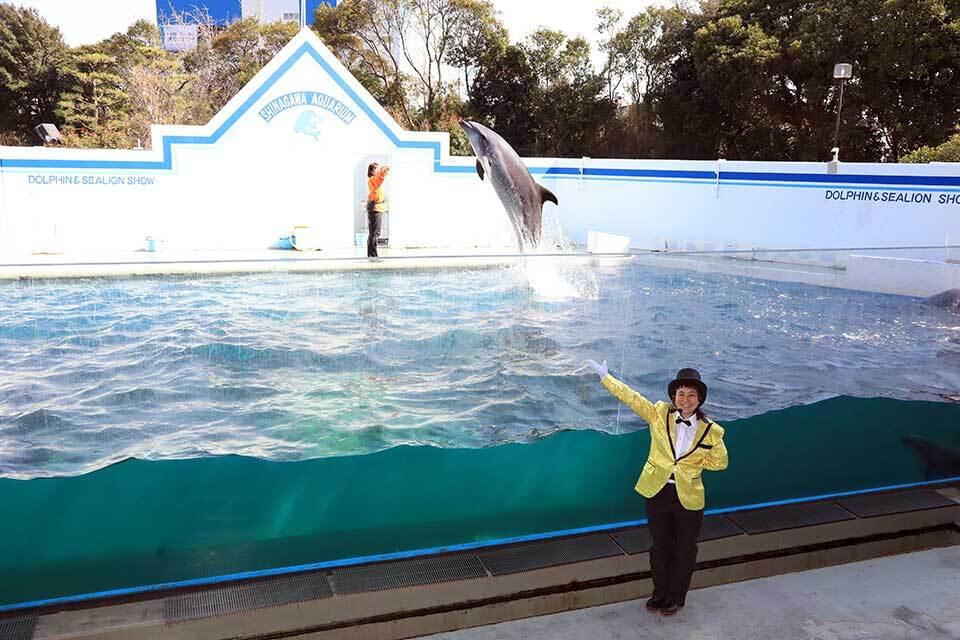 34-aquarium-tokyo-shinagawa-1